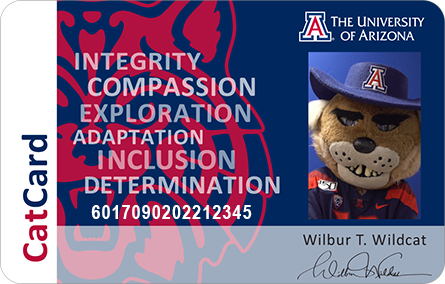 Sample CatCard Wilbur Wildcat