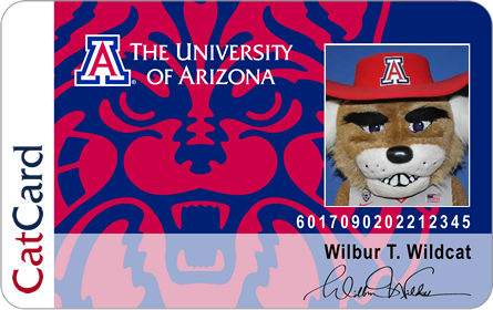 Sample CatCard - Wilbur Wildcat